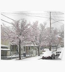 Feb. 19 2012 Snowstorm 12 Poster