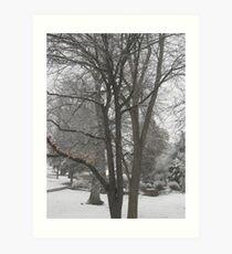 Feb. 19 2012 Snowstorm 16 Art Print