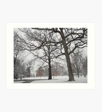 Feb. 19 2012 Snowstorm 19 Art Print
