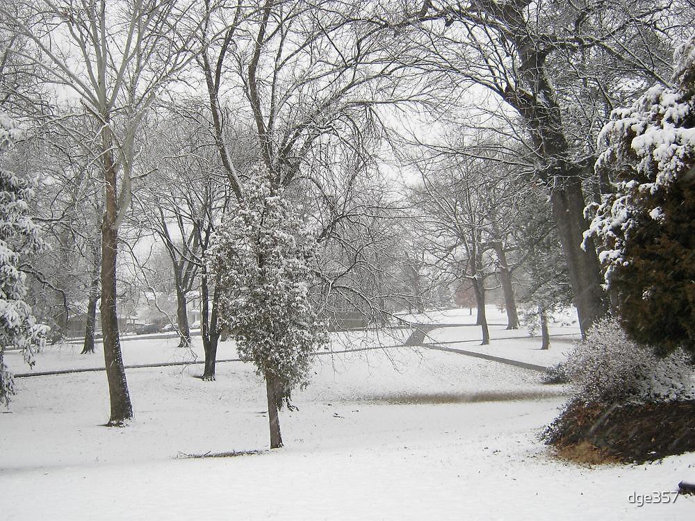Feb. 19 2012 Snowstorm 28 by dge357