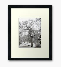 Feb. 19 2012 Snowstorm 29 Framed Print