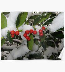 Feb. 19 2012 Snowstorm 33 Poster