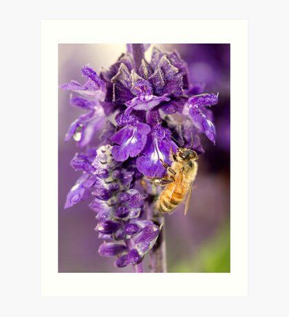 Purple Is My Favorite Color - Its BEEutiful Art Print