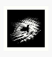 Coot, silhouette as swimming on a pond Art Print