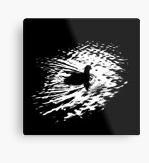 Coot, silhouette as swimming on a pond Metal Print