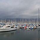 Santa Barbara Harbor #2 by Renee D. Miranda