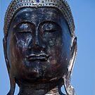 Buddha by Renee D. Miranda
