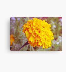 """Golden Marigold"" Canvas Print"