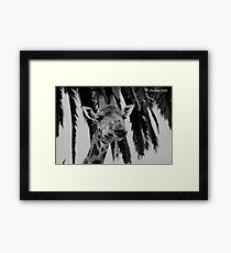 How can nature be ugly at times? Framed Print