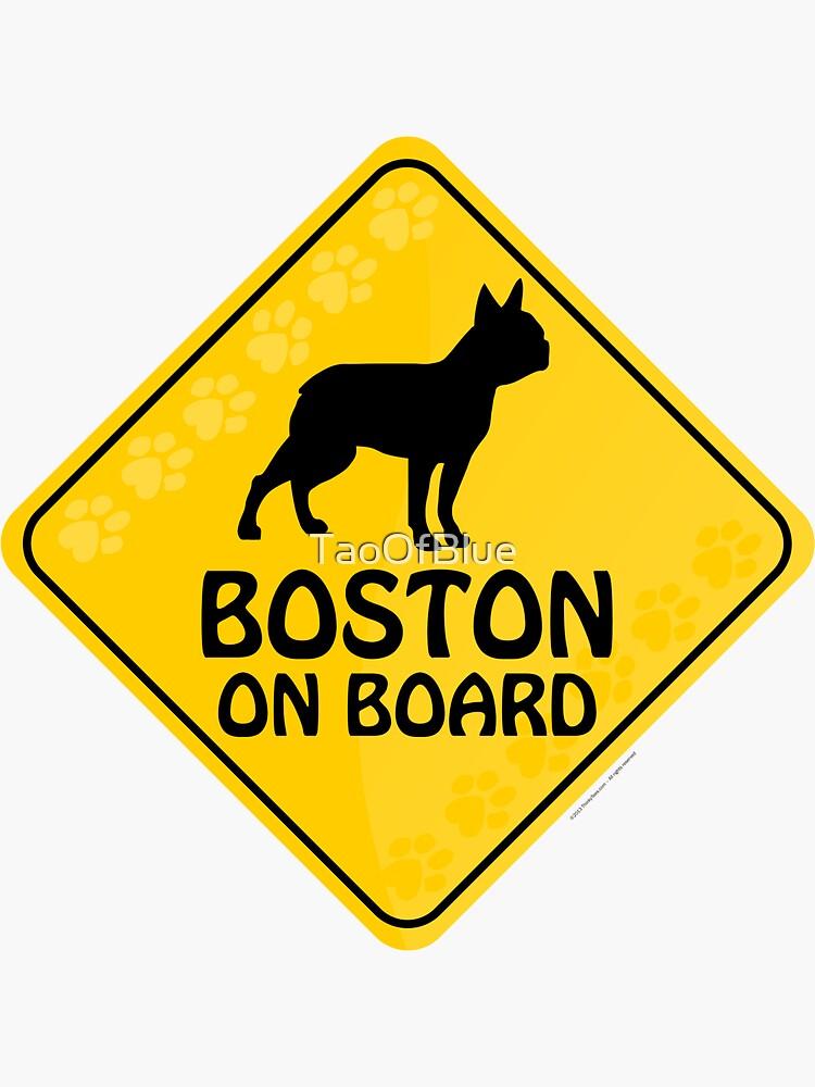 Boston On Board by TaoOfBlue