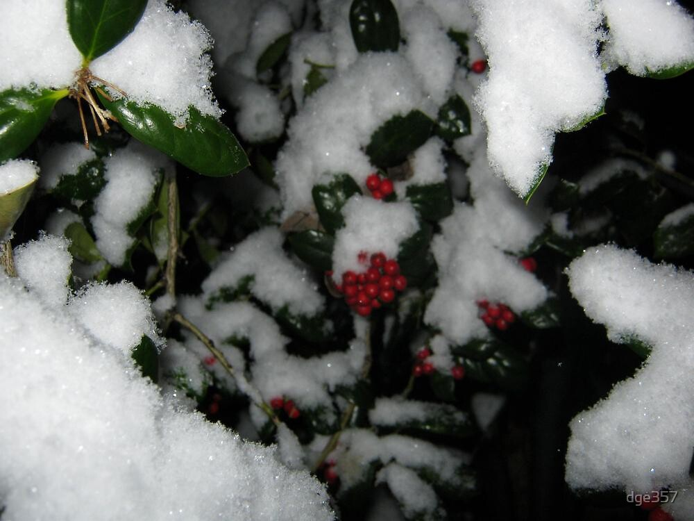 Feb. 19 2012 Snowstorm 48 by dge357