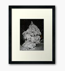 Feb. 19 2012 Snowstorm 52 Framed Print