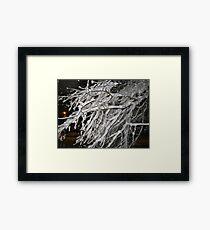 Feb. 19 2012 Snowstorm 60 Framed Print