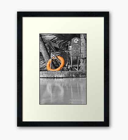 Save the Day! Framed Print