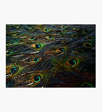 Sea of eyes... Photographic Print