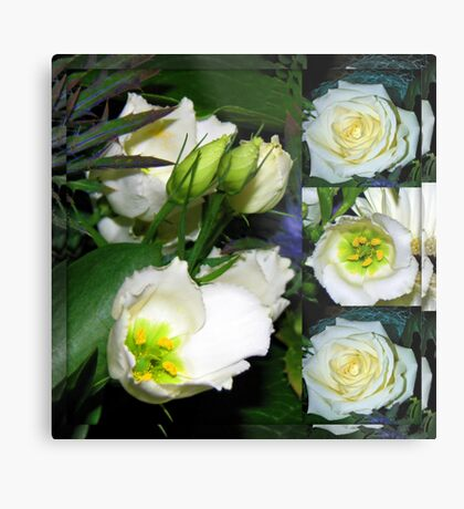 White Flowers Collage in Mirrored Frame Metallbild