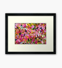 Background of vivid red leaves of autumn bush close-up Framed Print