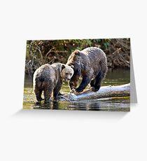 Grizzly Bear & Cub 2 Greeting Card