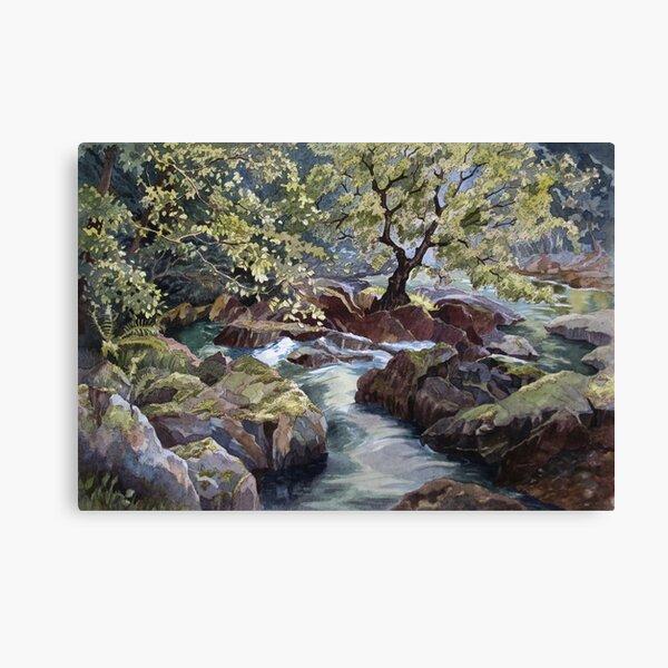 Ogwen Bank Canvas Print