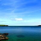 ESTUARY by AndyReeve