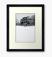 WInter 2 Framed Print