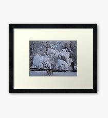 Feb. 19 2012 Snowstorm 79 Framed Print