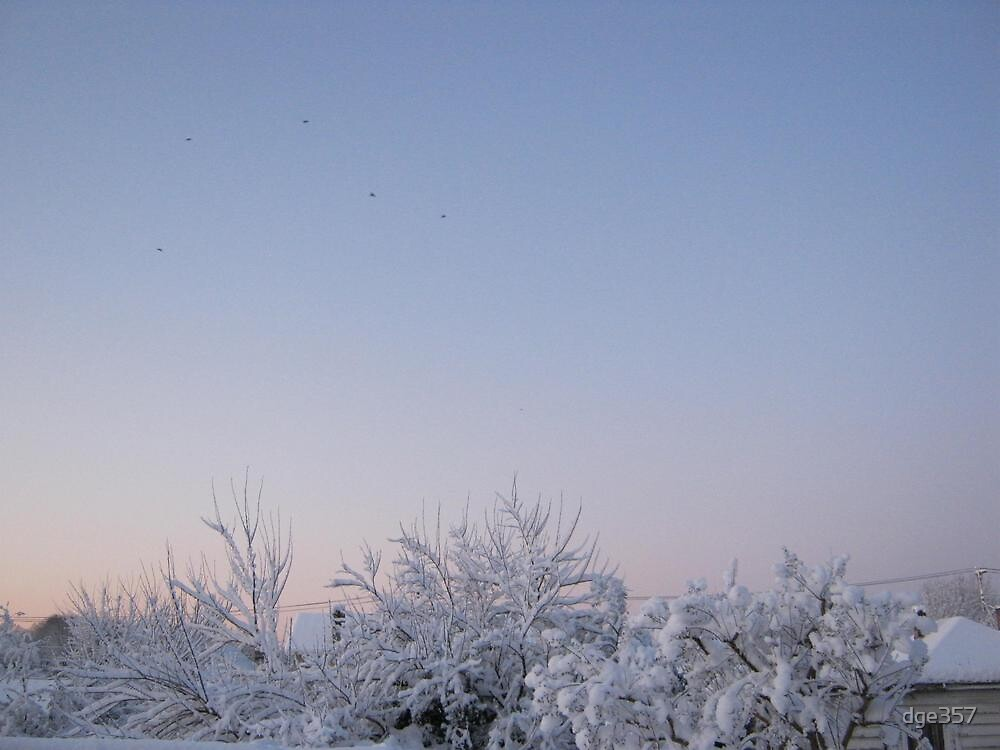 Feb. 19 2012 Snowstorm 87 by dge357