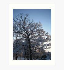 Feb. 19 2012 Snowstorm 118 Art Print