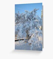 Feb. 19 2012 Snowstorm 120 Greeting Card
