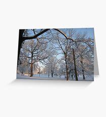 Feb. 19 2012 Snowstorm 133 Greeting Card