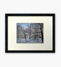 Feb. 19 2012 Snowstorm 134 Framed Print
