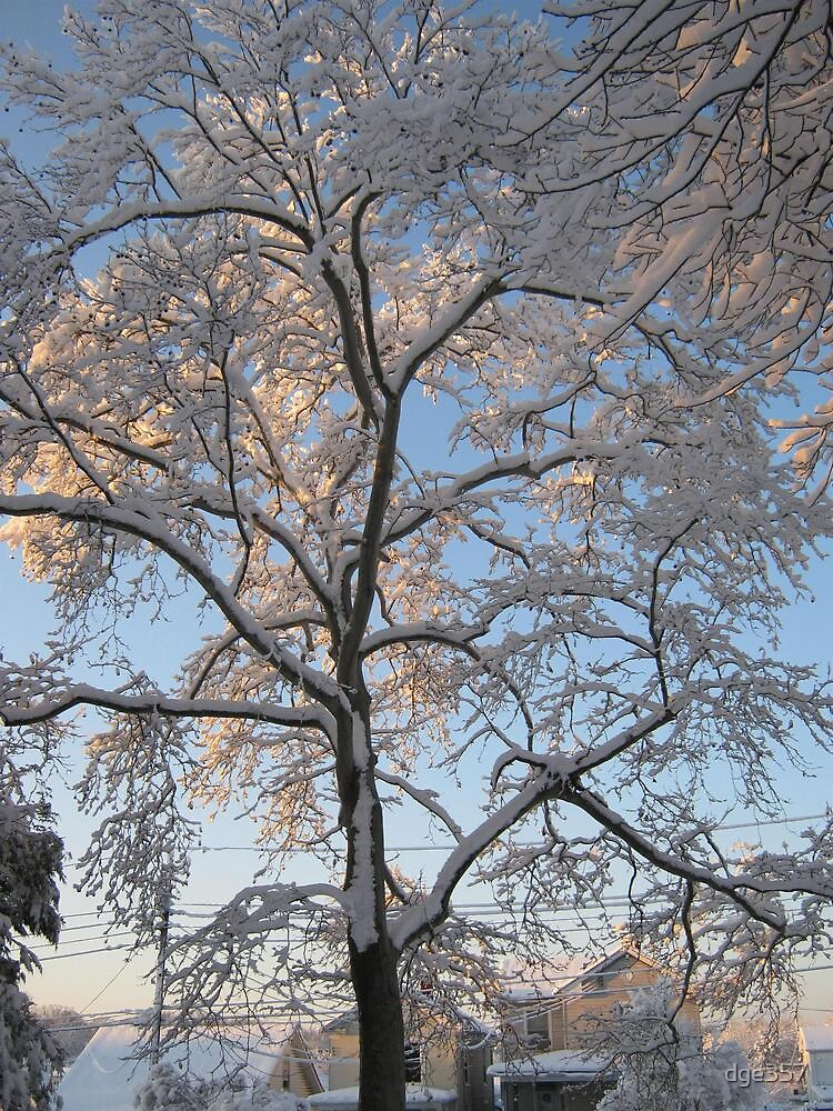 Feb. 19 2012 Snowstorm 136 by dge357