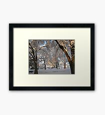 Feb. 19 2012 Snowstorm 137 Framed Print