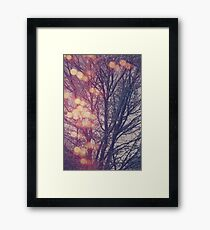 All the pretty lights (2) Framed Print