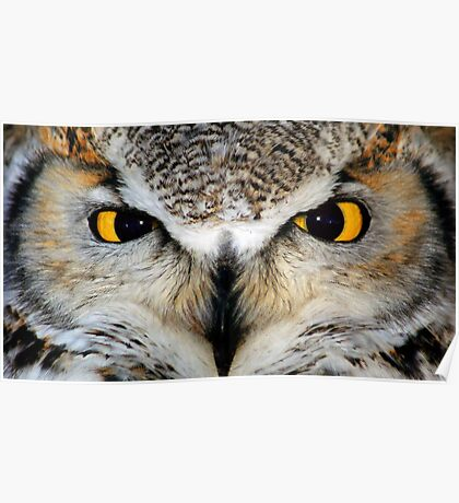 Whoo..Whoo..Whoo Are You? Poster