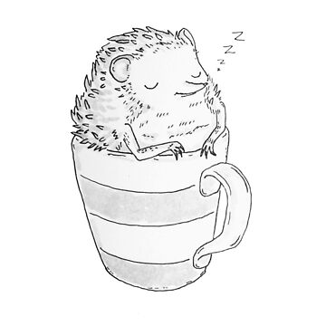 Hedgehog Naptime by katherinepigott