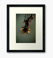 m31 Framed Print