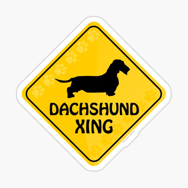 Dachshund (Wire Haired) Xing Sticker