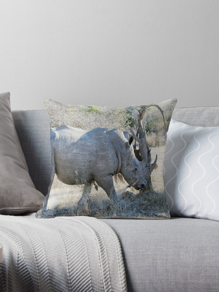 Charging Angry Rhino  by Michael  Moss