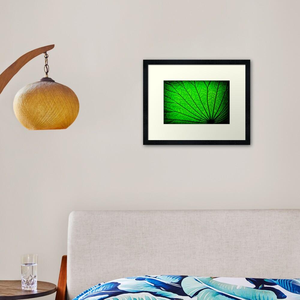 Lotus Leaf Framed Art Print