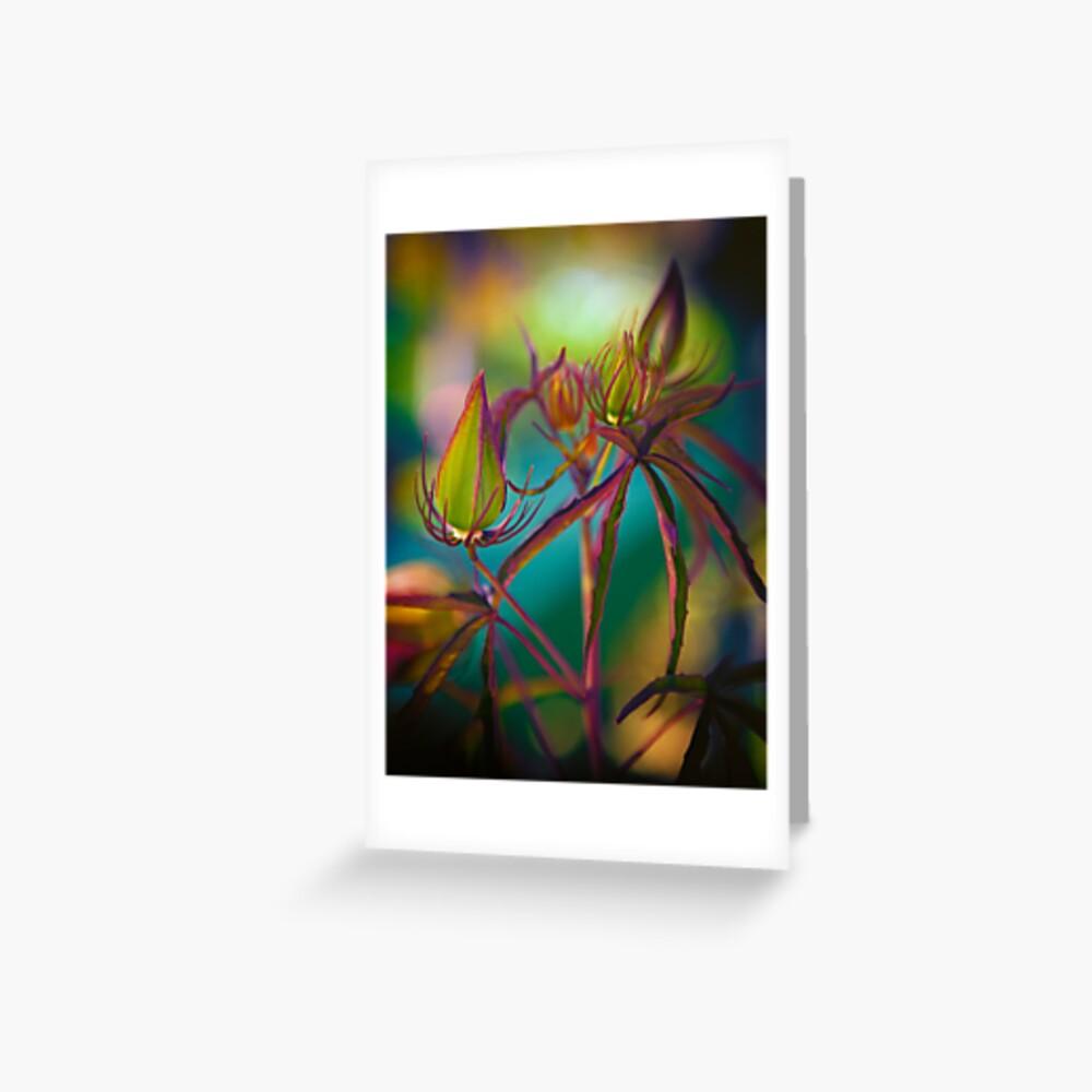 Fairy Buds Greeting Card