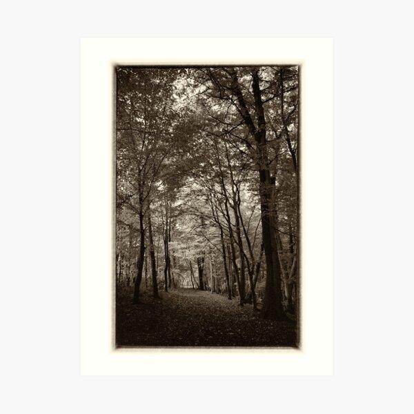 Rolduc Abbey Park, Kerkrade, Netherlands Art Print