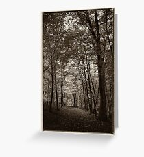Rolduc Abbey Park, Kerkrade, Netherlands Greeting Card