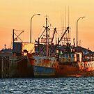 Rusty Ship, Rusty Sky by Debbie  Roberts