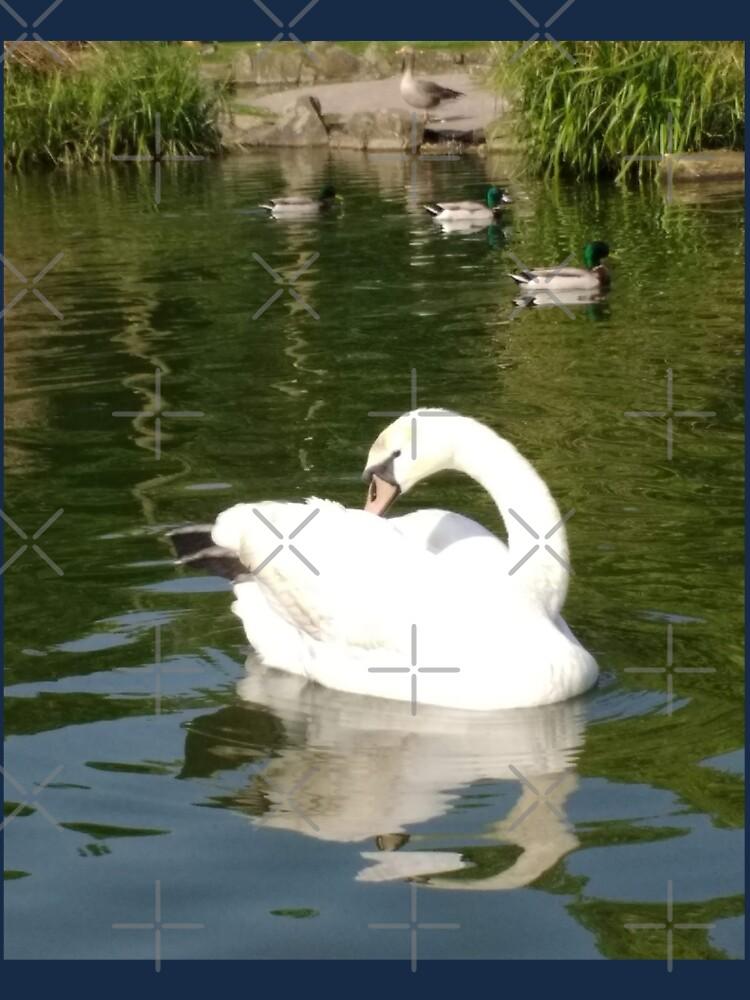 M.I. #65 |☼| Swan - Shot 23 (Pearson Park) by Naean
