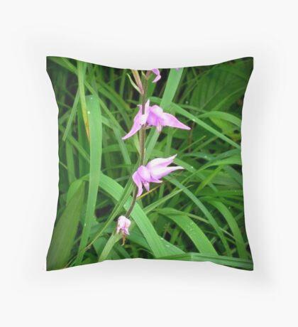 Cephalanthera rubra Throw Pillow