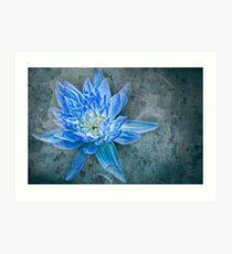 The Blue Dahlia - II - Interpretations Art Print