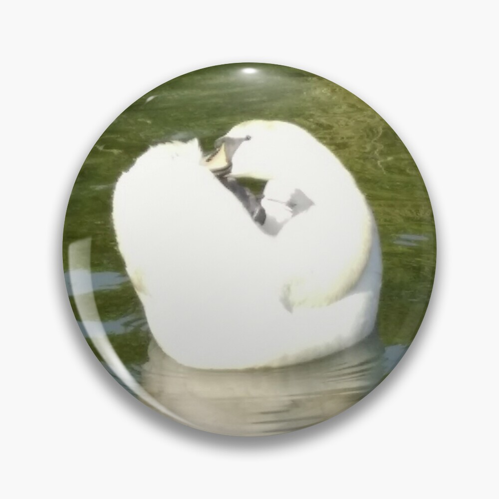 M.I. #67  ☼  Swan - Shot 25 (Pearson Park) Pin