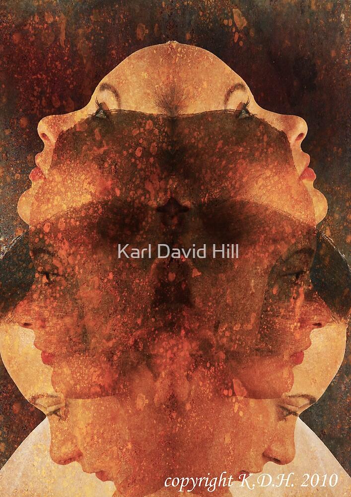 the falsehood by Karl David Hill