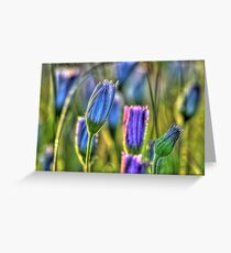 SpringFlowers_5875 Greeting Card